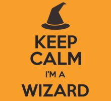 Keep Calm I'm A Wizard by tshirtdesign
