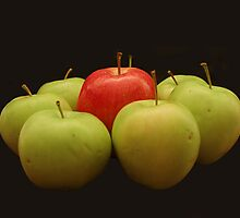 Apples by Lisa Williams
