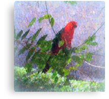 King Parrot III Metal Print