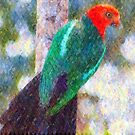 King Parrot I by Imageo