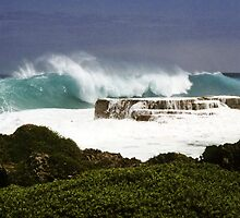 Nuku'alofa blowholes, Kingdom of Tonga by Fran E.