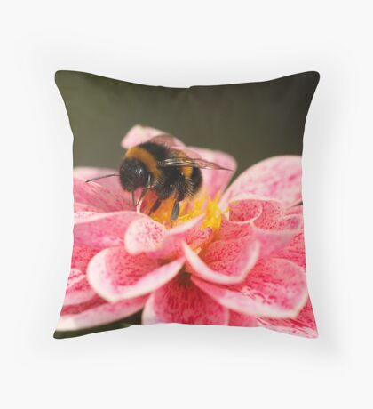Dahlia & Bee Throw Pillow