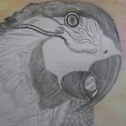 Parrot by Theodora