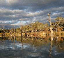 Reflections at Renmark, S.A. by elphonline