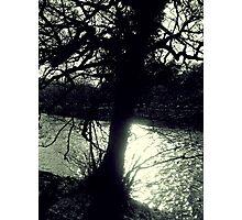 Sunlight on Water Photographic Print
