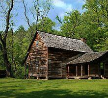 Home Sweet Home II by Lisa G. Putman
