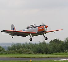 de Havilland Chipmunk ZS-VTL near touchdown by Paul Lindenberg