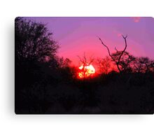 TYPICAL AFRICAN SUNSET Canvas Print