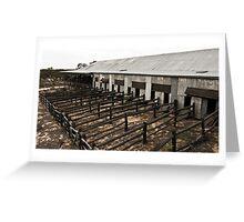 shearing shed Greeting Card