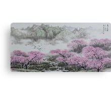 Beautiful spring   v1 Canvas Print