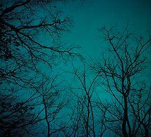 winter skies over me by Juilee  Pryor