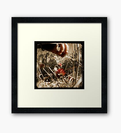 In the Land of Giants Framed Print