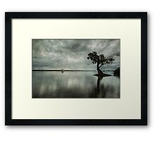 Blue Eve #2 Framed Print