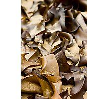 Sea Ribbons Photographic Print