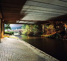 Tunnel by miesnert