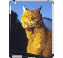 Ginger cat with toothache iPad Case/Skin