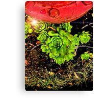 Green Crouch Canvas Print