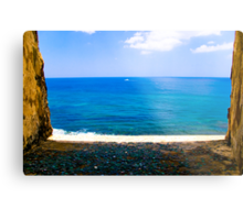 fort view Metal Print