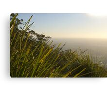 Mount Dandenong Canvas Print