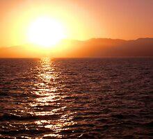 Sunset on Santa Monica CA by Anita Schuler
