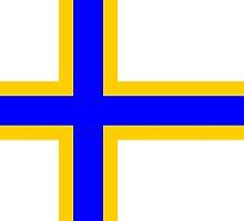 Sweden Finns people flag by tony4urban