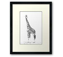 Giraffe Masai Mara Kenya Framed Print