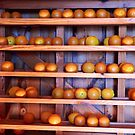 Orange Harvest by Rosalie Scanlon