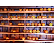 Orange Harvest Photographic Print