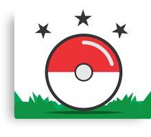 Catching Pokémon Canvas Print