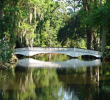 Magnolia Bridge by Linda Fields