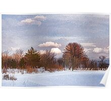 Colorful Winter Day on the Lake Poster