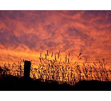 The Gone With The Wind Sunset Photographic Print