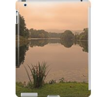 Peach Sky at Great Witley iPad Case/Skin