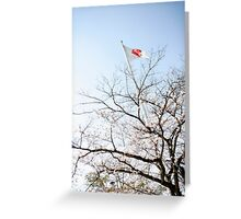 Hiroshima flag Greeting Card