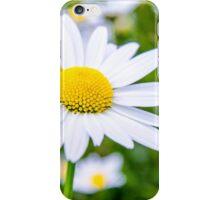 Alpine Daisy  iPhone Case/Skin