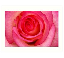 Raspberry Ripple Art Print
