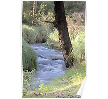 Winding Stream Poster