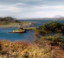 Castle Stalker by Linda  Morrison