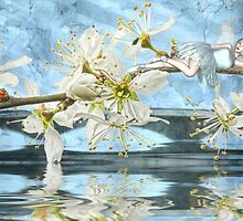 Blossom -  John Edwards & Rose by Rose Moxon