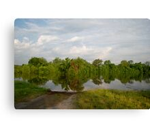 The river extended 1 Canvas Print