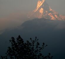 Machapuchare 'fishtail peak'  by kateabell