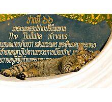Buddha nirvans Photographic Print