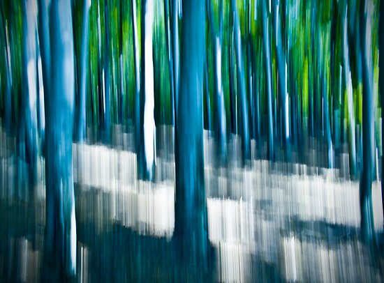 natural lines (precious illusions) by Dorit Fuhg