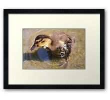Rejection......... Framed Print