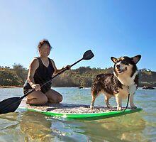 Happy Pup Paddle Boarding by Dan Jesperson