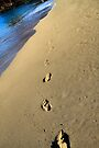 Ka'anapali Footprints by DJ Florek