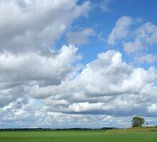 Prairie Clouds by Stephen Thomas