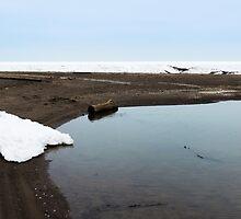 Old Woman Creek - Winter Beach by SRowe Art
