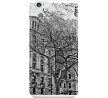 A Tree Grows in the City iPhone Case/Skin