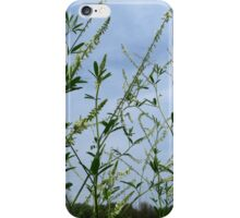 White Sweet Clover And Friends iPhone Case/Skin